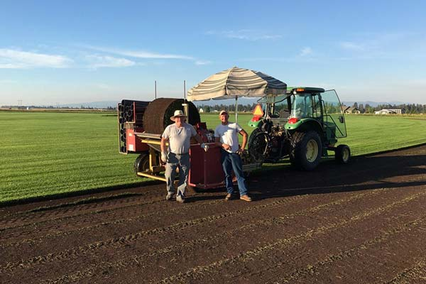 About Green Valley Sod Farm in Flathead Valley MT
